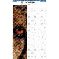 OKI Standard M-B-105 - Matt - A3 Nobi (328 x 453 mm) - 105 g/m² - 500 Blatt Papier (Packung mit 2)